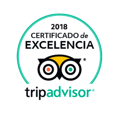 Flexi Travel no Tripadvisor